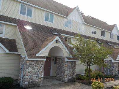 Ulster County Townhouse For Sale: 274 County Route 65 Unit 51