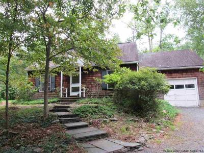 Woodstock Single Family Home For Sale: 106 Chestnut Hill Road