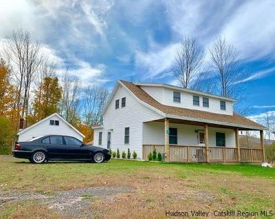 Greene County Multi Family Home For Sale: 5523 Route 23a