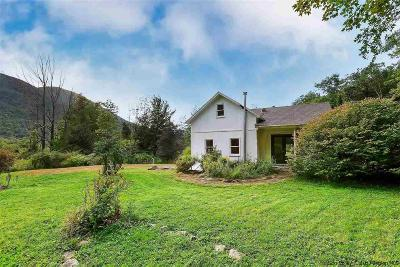 Ulster County Single Family Home For Sale: 23 Traver Hollow Road