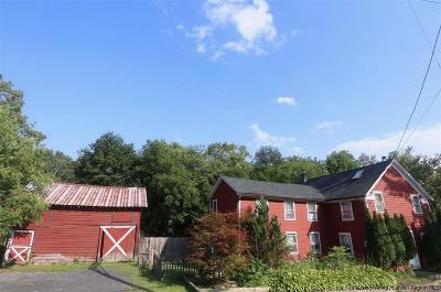 Saugerties Single Family Home For Sale: 353 Fishcreek Road