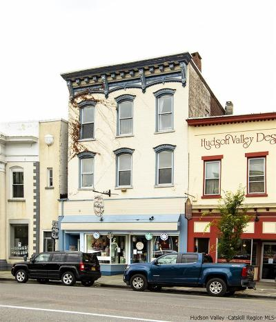 Saugerties Multi Family Home For Sale: 262 Main Street