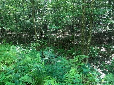 Kerhonkson Residential Lots & Land For Sale: (201) Schroon Hill Rd