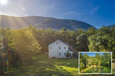 Saugerties Single Family Home For Sale: 47 Cranberry Lane