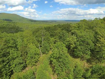 Kerhonkson Residential Lots & Land For Sale: Camp Adventure Road