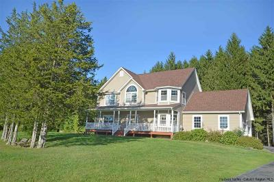 New Paltz Single Family Home For Sale: 7 Waring Lane