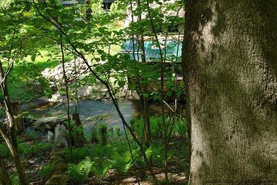 Woodstock Residential Lots & Land For Sale: 5 Calamar Lane
