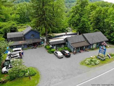 Shandaken Single Family Home For Sale: 7053 State Route 28