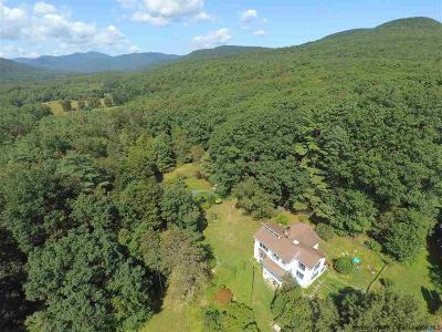 Bearsville Single Family Home For Sale: 17 Jonet Lane
