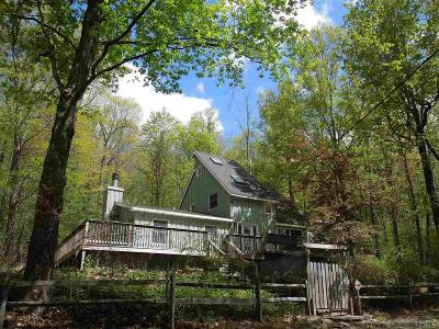 Orange County, Sullivan County, Ulster County Rental For Rent: 10 Four Wheel Drive