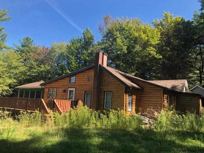 Greene County Single Family Home For Sale: 338 County Route 56