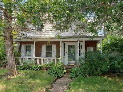 Greene County Single Family Home For Sale: 518 Old Route 23 Route