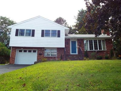 Saugerties Single Family Home For Sale: 16 Virginia Ave