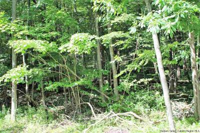 Stone Ridge Residential Lots & Land For Sale: Oakwood Dr