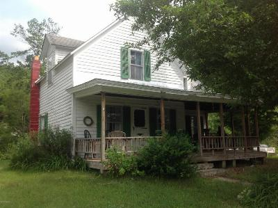 Horicon Single Family Home For Sale: 336 Horicon Avenue