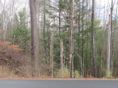 Lake George Residential Lots & Land For Sale: Middle Road, Lot 1