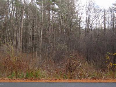 Lake George Residential Lots & Land For Sale: Middle Road, Lot 2