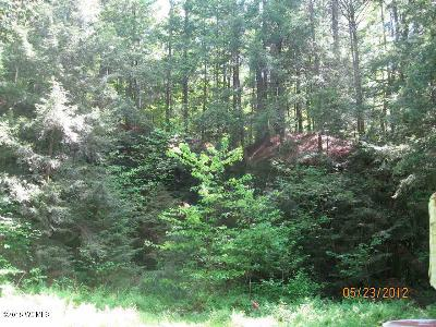 Brant Lake Residential Lots & Land For Sale: 00 Ira Frazier