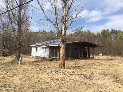 Ticonderoga Single Family Home For Sale: 671 New Hague