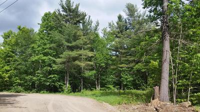 Brant Lake Residential Lots & Land For Sale: 00 Harris Road