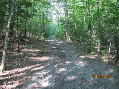 Washington County Residential Lots & Land For Sale: Off Maple Street