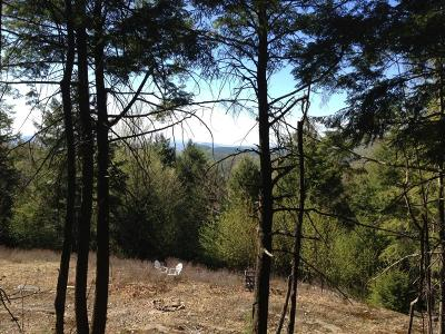 Lake George Residential Lots & Land For Sale: Lot 11 Spring Woods