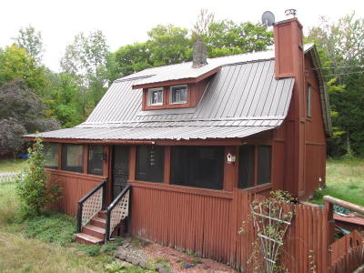 Horicon Single Family Home For Sale: 1201 Valentine Pond Road