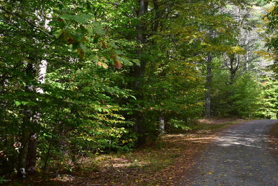 Brant Lake Residential Lots & Land For Sale: 00 Summit Road Road