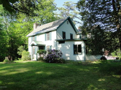 Chestertown Single Family Home For Sale: 1176 Friends Lake