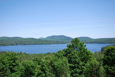 Residential Lots & Land For Sale: 53 S Schroon