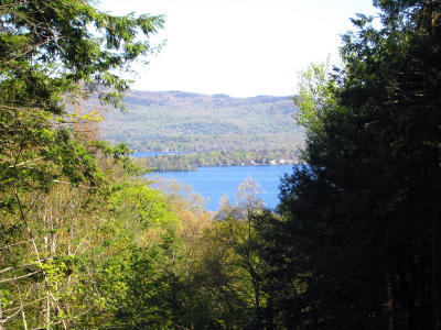Lake George Residential Lots & Land For Sale: 49 Watershed Road