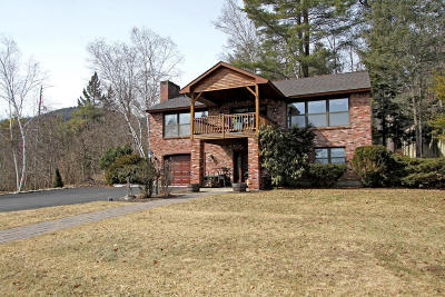 Lake George Single Family Home For Sale: 3740 Lakeshore Drive