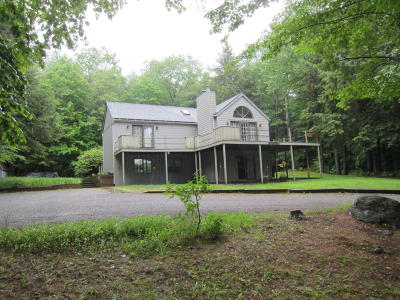 Lake George Single Family Home For Sale: 60 Wall Street