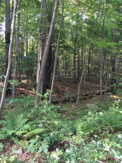 Residential Lots & Land For Sale: Lot B Cramer Ridge Road