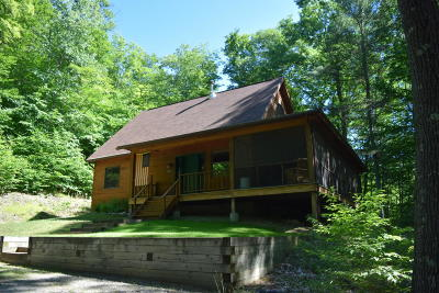 Brant Lake Single Family Home For Sale: 395 Bean Road