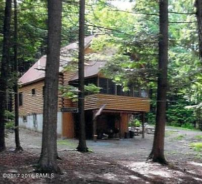 Brant Lake Single Family Home For Sale: 142 Meade Rd