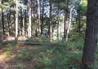 Bolton Residential Lots & Land For Sale: E. Schroon River
