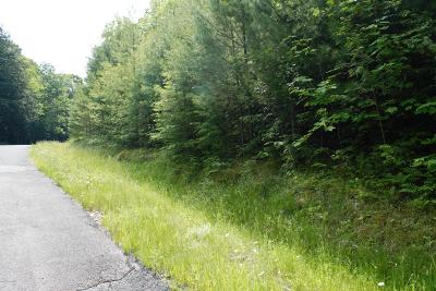 Lake George Residential Lots & Land For Sale: Lot 4 Spring Woods Road