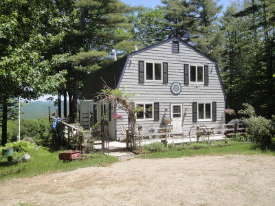 Schroon Single Family Home For Sale: 682 Charley Hill Road