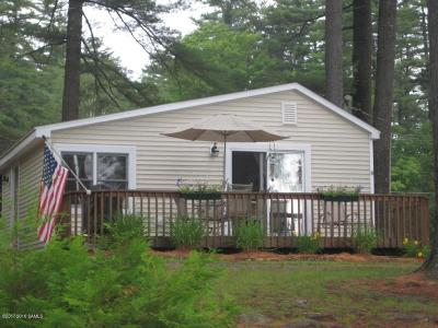Schroon Single Family Home For Sale: 6 Phoenix Tree Court