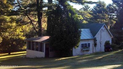 Schroon Single Family Home For Sale: 337 Nys Route 74