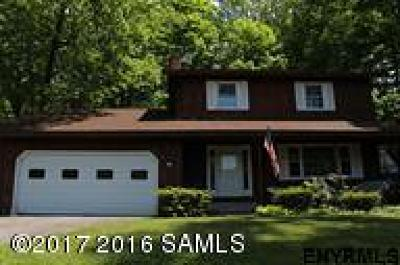 Lake George Single Family Home For Sale: 22 Michelli Road