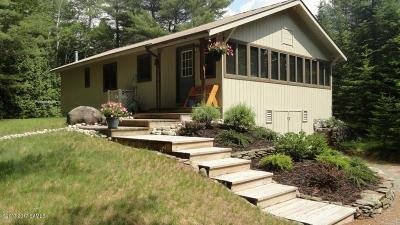 Schroon Single Family Home For Sale: 251 Sweenie Fields Road