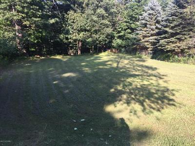 Hadley NY Residential Lots & Land For Sale: $14,999