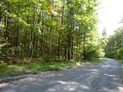 Lake George Residential Lots & Land For Sale: 00 Shaw Road