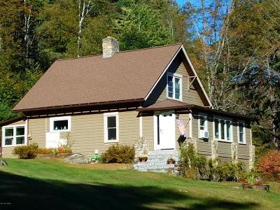 Brant Lake Single Family Home For Sale: 796 Beaver Pond