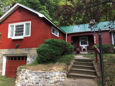 Lake George Single Family Home For Sale: 346 Bloody Pond Road