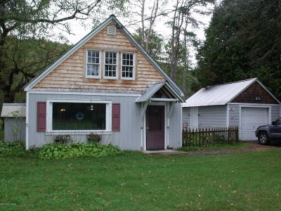Warrensburg Single Family Home For Sale: 895 Schroon River Road