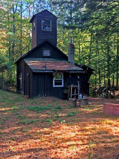 Schroon Single Family Home For Sale: 847 Hoffman Road