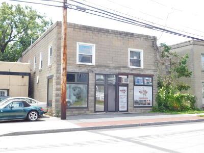 Hudson Falls Vlg Multi Family Home For Sale: 248 Main St